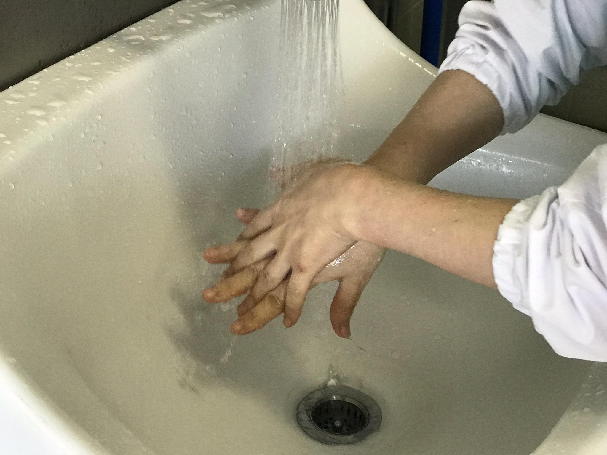 手洗い④.jpg