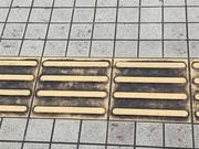 清掃前2 視覚障碍者用 点字ブロック 前1.JPG